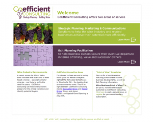 Coefficient Consulting Website